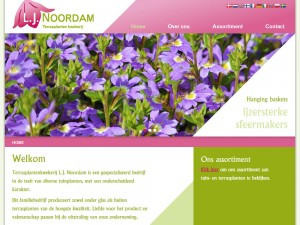 WordPress website op basis van aangeleverd webdesign