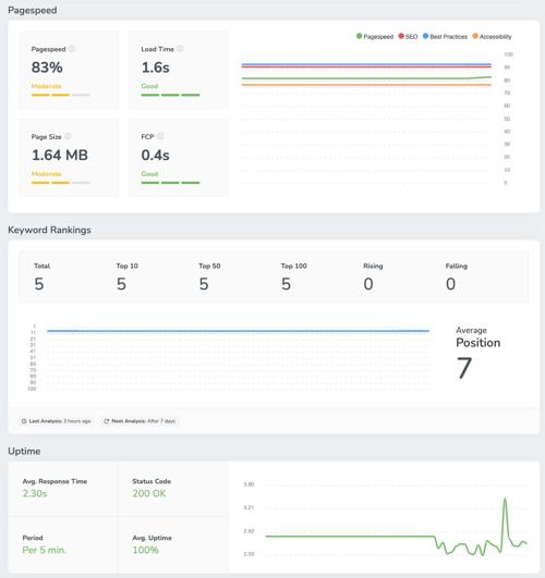 screpy seo rapport, overzicht website snelheid en weergave uptime